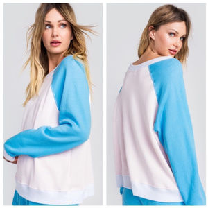 Wildfox Local Sommers Sweater Sweatshirt Pink Blue